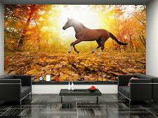 Horse in Fall Park  Wall Mural Photo Wallpaper GIANT WALL DECOR PAPER POSTER