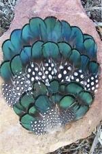 #109 GREEN LADY AMHERST, SPOTTED GUINEA HEN FEATHER PAD