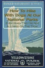 How to Hike with Dogs at Our National Parks - Even When They're Not Allowed...