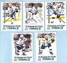 2015 Russian Ice Stanley Cup Finals Tampa Bay Lightning Team Set (23)