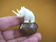 TNE-RHI-500A) white albino RHINO Rhinoceros TAGUA NUT Figurine carving Vegetable