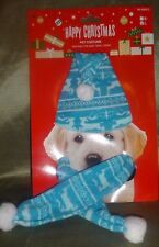 Blue Christmas Pet Hat and Scarf