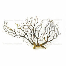 "8"" 20cm Netural Sea Fan Fish Tank Aquarium Decoration Sea Coral Ornament"