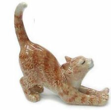 R314D - Northern Rose Miniature  -Orange Kitten Stretching