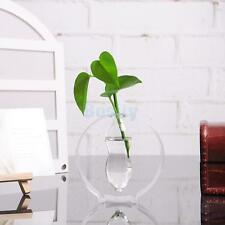 Clear Glass Vase Flower Landscape Hydroponics Terrarium Bottle Container Pot