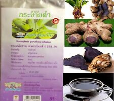 20 TEA BAGS HERBAL GALINGALE BLACK HERBAL STRENGTHEN VIGOR HORMONE MALE SEXUAL