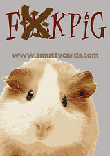 F##kpig - Very Rude Guinea Pig Card ~ Potty Mouth Cards - PM-WL1515