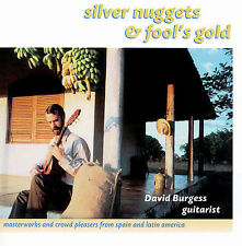 Silver Nuggets & Fool's Gold by David Burgess