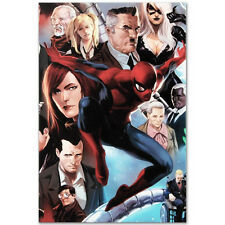 AMAZING SPIDERMAN Original Giclee Marvel Artwork Comic Stan Lee Marko Djurdjevic
