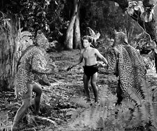 Johnny Sheffield UNSIGNED photo - B2650 - Tarzan and the Leopard Woman
