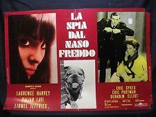 FOTOBUSTA CINEMA - LA SPIA DAL NASO FREDDO - L. HARVEY - 1966 - FANTASCIENZA -01