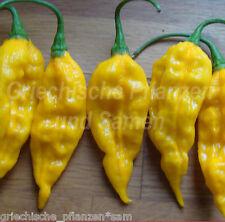 Bhut Bih Jolokia Chili amarillo más picante Chili 10 Semillas