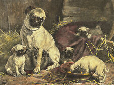 PUG CHARMING DOG GREETINGS NOTE CARD MUM AND LITTER OF PUPPIES PLAY IN BARN