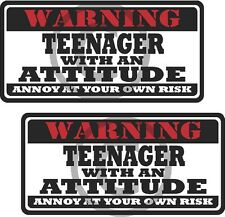 """2 - 3"""" Teenager Teen Funny Warning Tools Auto Motorcycle Decal Hat Sticker WS1"""