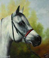 """Oil Painting on Stretched Canvas 20""""x24""""- White Horse"""