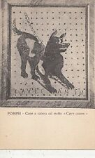 BF32269 pompei cane a catena col motto cave canem  italy front/back image