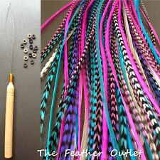 Feathers Hair Extensions Kit Lot of 20 Grizzly long skinny Natural Real RO KIT