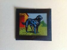 VINTAGE BLUE CAP CHEESE FLIXIES (TRANSPARENCY) DOG SERIES No 11 NEW FOUNDLAND