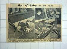 1951 Renovations To Rowing Boats In Stanley Park Boat House Blackpool