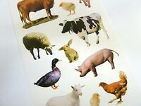 Farm Animal Stickers, Kids Labels for Craft, Decoration, Card-Making AP02