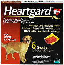 Boxes Heart Guard Plus 6 Doses Chewables for Dogs 51-100 Pounds