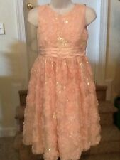 Girl's size 14 American Princess Pink Floral Sequined Special Occasion Dress