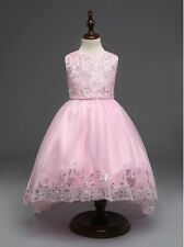 Sequin Embroidery Silver Butterfly Accent Flower Girl Dress Pink 110/2-4 Y
