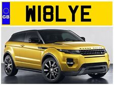 W18 LYE WILLIAMS WILLY WILLIAM WILL BILL WILIAM PRIVATE NUMBER PLATE BILLY BILLS