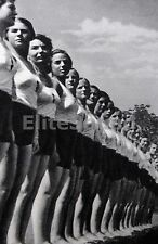 WW2 Picture Photo Member Young women of Bund Deutscher Mädel League German 1061