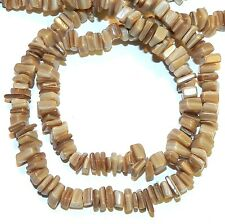 MP2454f Dark Sandy Brown Medium (6x2 - 8x3) Chip Mother of Pearl Shell Beads 34""