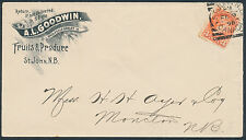 1898 Goodwin Fruits Advertising, St John NB Squared Circle, #41 3c Small Queen