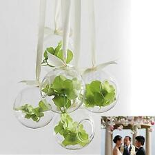 10x Globe Ball Glass Hanging Plant Terrarium Flower Vase Pot Wall Wedding Decor@