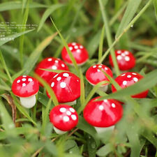 20pcs Chic Mini Red Mushroom Miniature Plant Pots Fairy Decor Garden Magic Craft