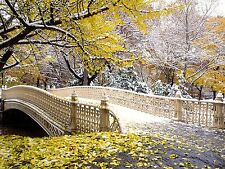 Scenic View Early Snowfall Central Park  photo Print A4 NEW FREE UK POSTAGE
