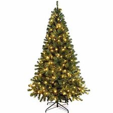 NEW Colorado Green Spruce Pre-Lit Christmas Tree 250 Warm White LED Lights 7FT
