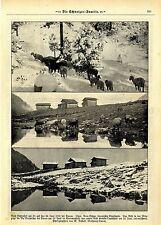 Vom Schneefall am 23.-24.Juni 1918 bei Davos. Zeitschriften.Aufnahmen von 1918