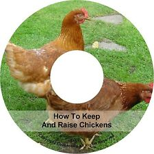 Keeping Rearing Raising Pet Chickens Care How To Build Chicken Coop Books on CD