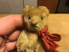 Rare Antique Early 1900s Steiff Miniature TINY Teddy Bear Mohair Bear No Button