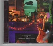 (FX612) Honeygene, A Beautiful Place To Get Lost - 2007 CD