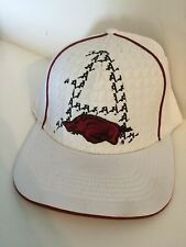 Arkansas Razorbacks Top of the World Matrix Stretch fit hat M/L White