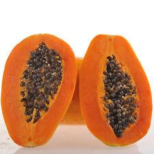 16Pcs lo último inicio Jardín Plantas Semillas Delicioso Verduras Fruta árbol Semillas De Papaya