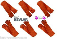 6 PAIR LONG ARM PET DOG CAT BIRD REPTILE KEVLAR LEATHER Animal Handling Gloves