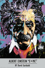 Albert Einstein Poster by David Garibaldi Art Print 24x36