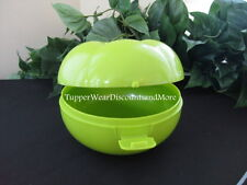 Tupperware NEW RARE Tomato Tomatoe Keeper Forget Me Not Tomatillo Keeper Green