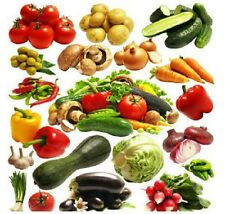 4500+ SURVIVAL HEIRLOOM VEGETABLE GARDEN SEEDS NON GMO ORGANIC FOOD BANK LOT FS