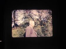 35 mm slide Marijuana farm Plant Harvest Africa Congo Dr Hamburg Huge monster