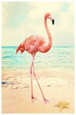 (LAMINATED) FLAMINGO POSTER (61x91cm)  NEW WALL ART