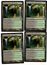 MAGIC 4x Cancello Della Gilda Golgari - Golgari Guildgate 290/356 C13 Italiano