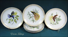 Six MOTTAHEDEH Bird of Paradise Salad / Dessert Plate - Two Sets Available