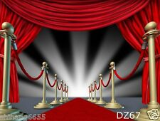 10X10FT RED CARPET Vinyl photography Backdrop Background Studio Photo Props DZ67
